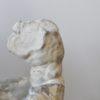sculpture-platre-torse-du-belvedere